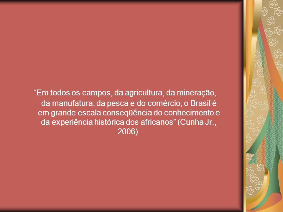 Em todos os campos, da agricultura, da mineração, da manufatura, da pesca e do comércio, o Brasil é em grande escala conseqüência do conhecimento e da experiência histórica dos africanos (Cunha Jr., 2006).