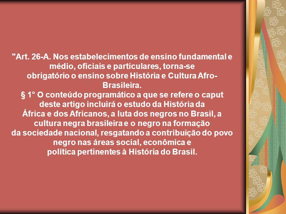 Apesar das diferenças de pontos de vista, a busca de uma identidade étnica única para o País tornou-se preocupante para vários intelectuais desde a primeira República (...) Todos estavam interessados na formulação de uma teoria do tipo étnico brasileiro, ou seja, na questão da definição do brasileiro enquanto povo e do Brasil como nação.