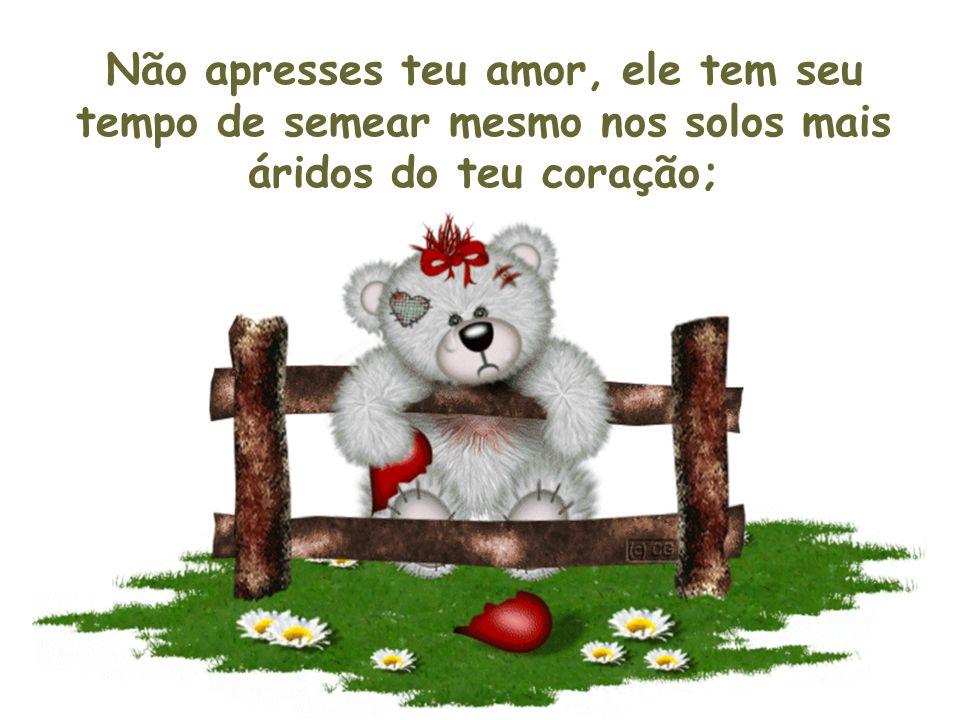 Não apresses teu amor, ele tem seu tempo de semear mesmo nos solos mais áridos do teu coração;