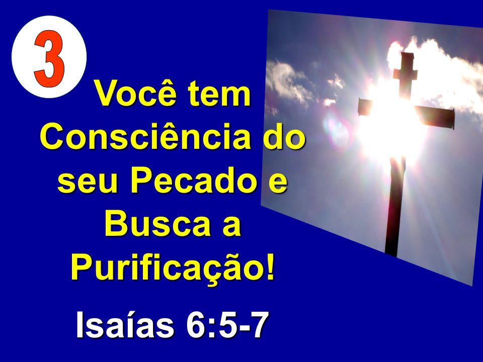 Você tem Consciência do seu Pecado e Busca a Purificação! Isaías 6:5-7