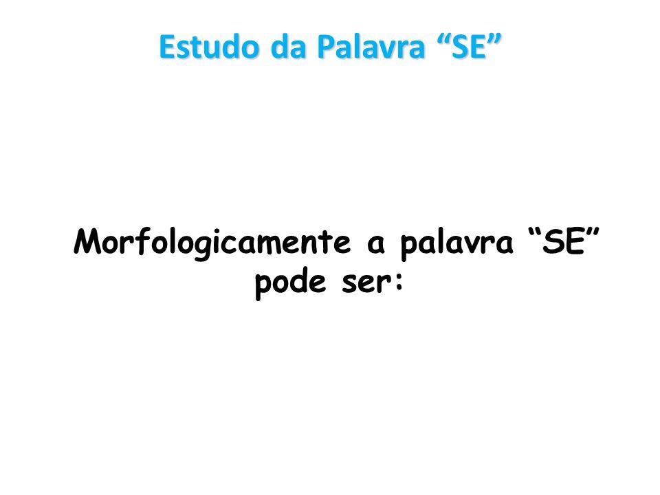Estudo da Palavra SE Morfologicamente a palavra SE pode ser: