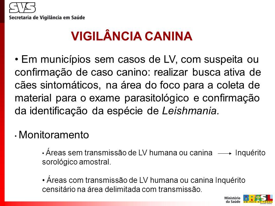 VIGILÂNCIA CANINA Em municípios sem casos de LV, com suspeita ou confirmação de caso canino: realizar busca ativa de cães sintomáticos, na área do foco para a coleta de material para o exame parasitológico e confirmação da identificação da espécie de Leishmania.