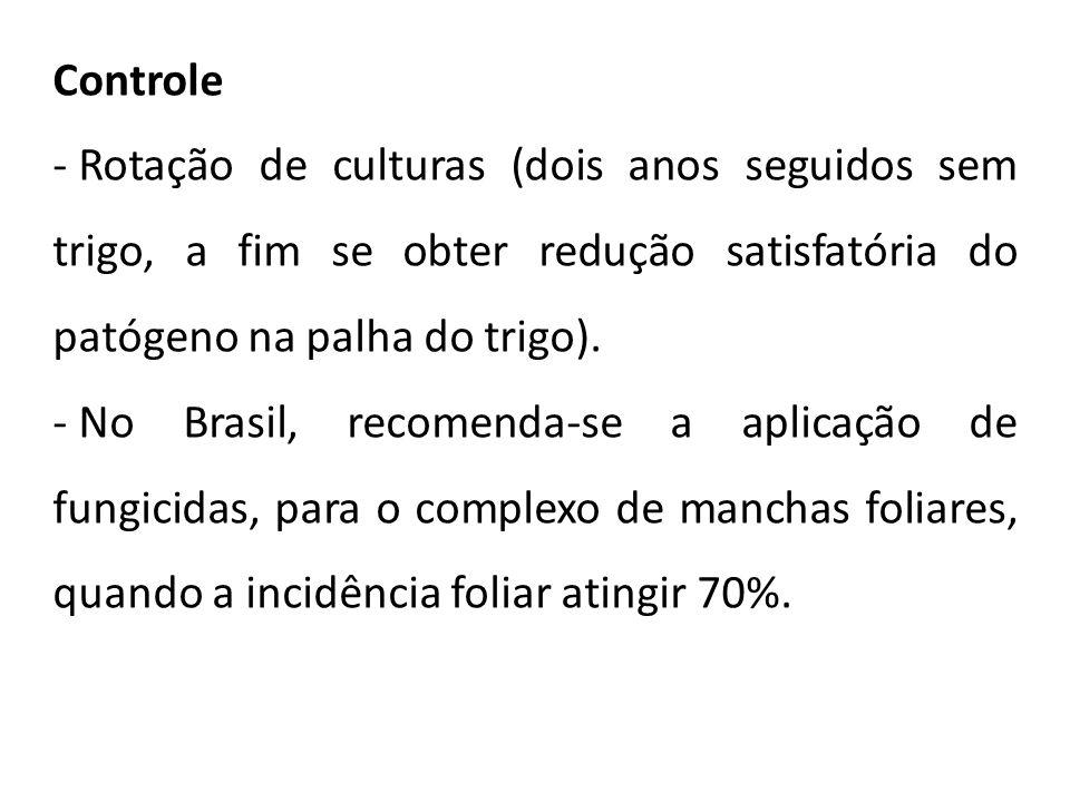 Controle - Rotação de culturas (dois anos seguidos sem trigo, a fim se obter redução satisfatória do patógeno na palha do trigo). - No Brasil, recomen