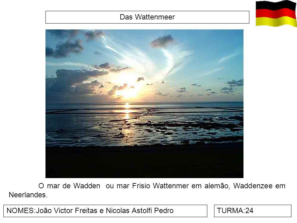 Das Wattenmeer NOMES:João Victor Freitas e Nicolas Astolfi PedroTURMA:24 O mar de Wadden ou mar Frisio Wattenmer em alemão, Waddenzee em Neerlandes.
