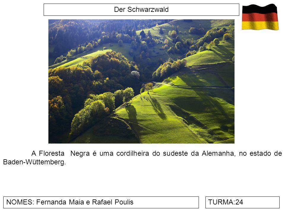 Der Schwarzwald NOMES: Fernanda Maia e Rafael PoulisTURMA:24 A Floresta Negra é uma cordilheira do sudeste da Alemanha, no estado de Baden-Wüttemberg.