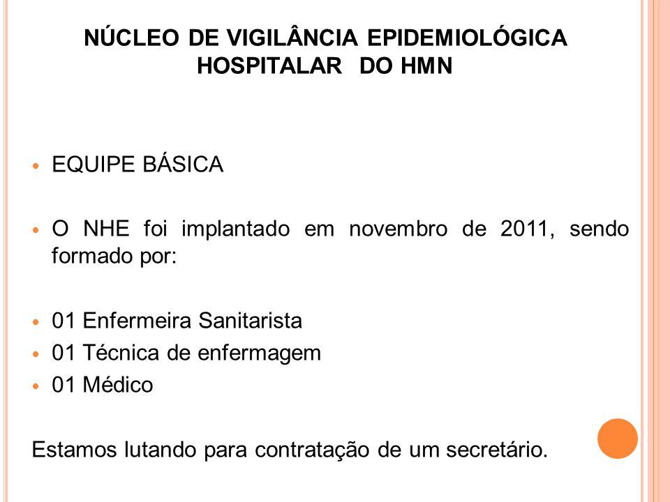 EQUIPE BÁSICA O NHE foi implantado em novembro de 2011, sendo formado por: 01 Enfermeira Sanitarista 01 Técnica de enfermagem 01 Médico Estamos lutand