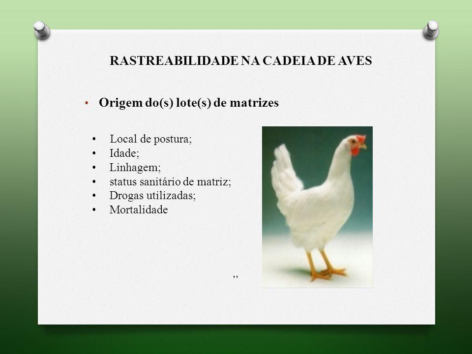 RASTREABILIDADE NA CADEIA DE AVES Origem do(s) lote(s) de matrizes,, Local de postura; Idade; Linhagem; status sanitário de matriz; Drogas utilizadas; Mortalidade,,,,,,