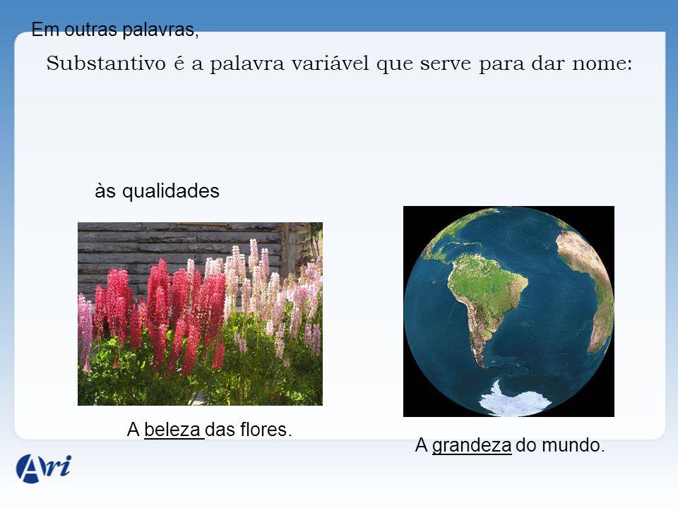 Em outras palavras, Substantivo é a palavra variável que serve para dar nome: às qualidades A beleza das flores. A grandeza do mundo.
