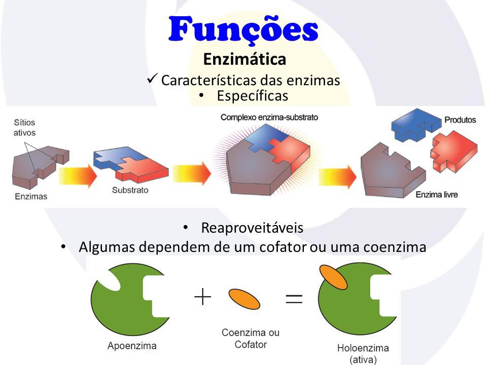 Funções Características das enzimas Enzimática Específicas Reaproveitáveis Algumas dependem de um cofator ou uma coenzima
