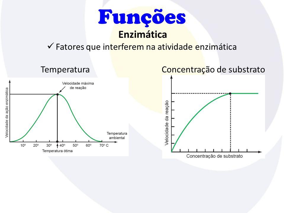 Funções Fatores que interferem na atividade enzimática Enzimática TemperaturaConcentração de substrato