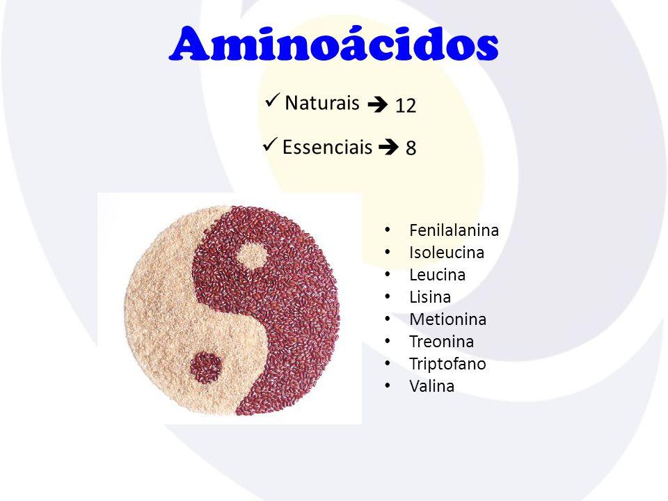 Funções Fatores que interferem na atividade enzimática Enzimática pH