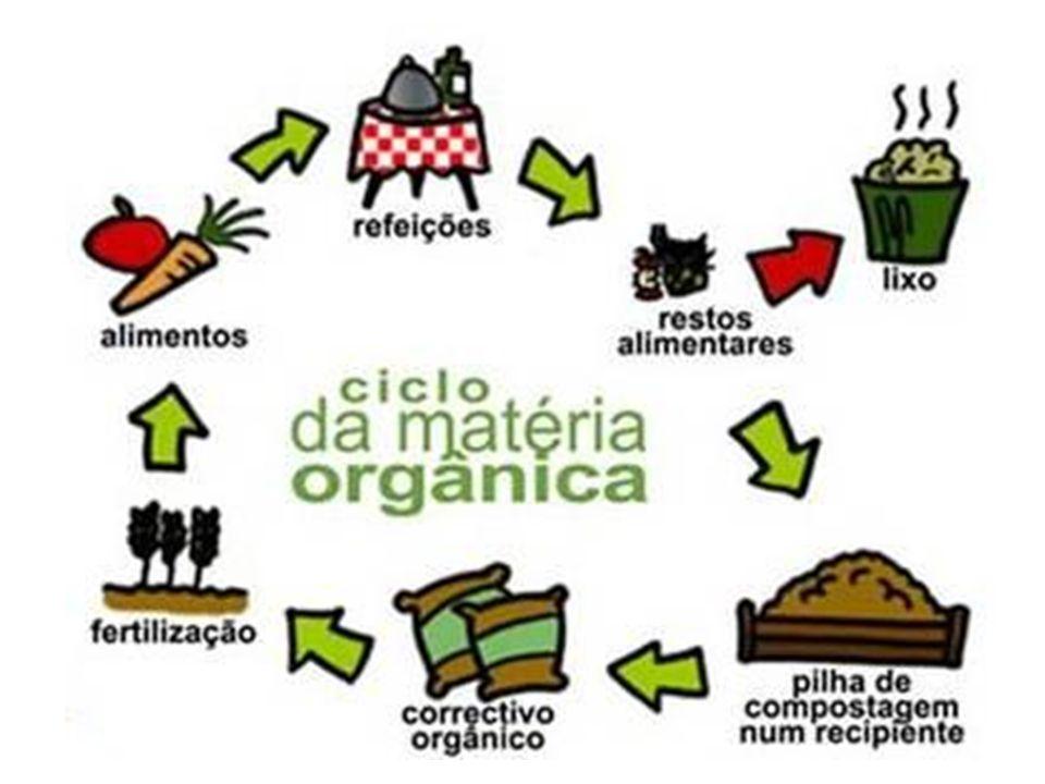 Fonte: www.ficruz.br