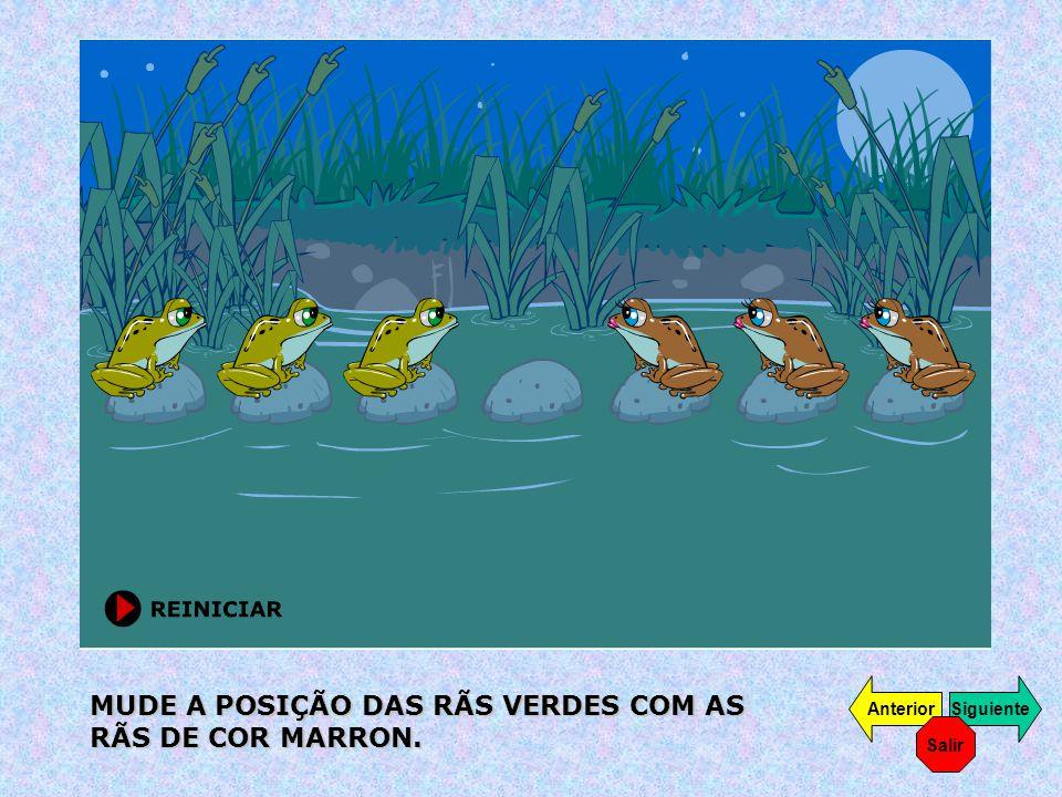 AJUDE O REMADOR A CRUZAR PARA O OUTRO LADO DO RIO, O LOBO, A OVELHA E OS REPOLHOS.