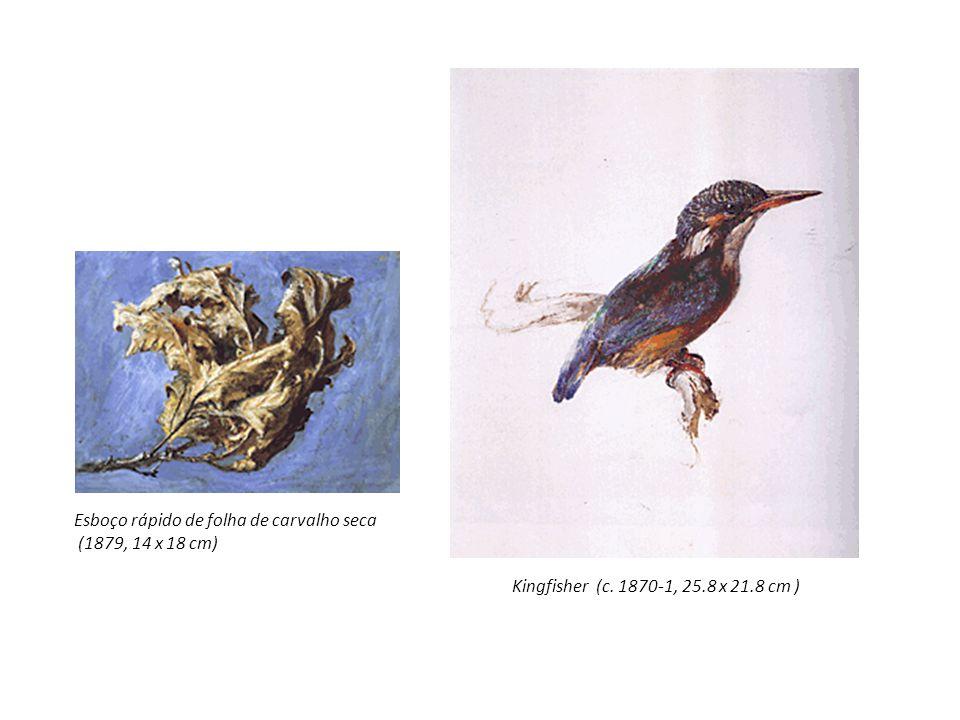 Kingfisher (c. 1870-1, 25.8 x 21.8 cm ) Esboço rápido de folha de carvalho seca (1879, 14 x 18 cm)
