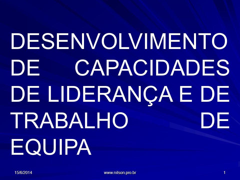15/6/2014 www.nilson.pro.br 1 DESENVOLVIMENTO DE CAPACIDADES DE LIDERANÇA E DE TRABALHO DE EQUIPA