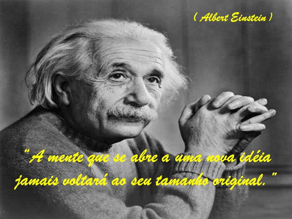 A mente que se abre a uma nova idéia jamais voltará ao seu tamanho original. ( Albert Einstein )