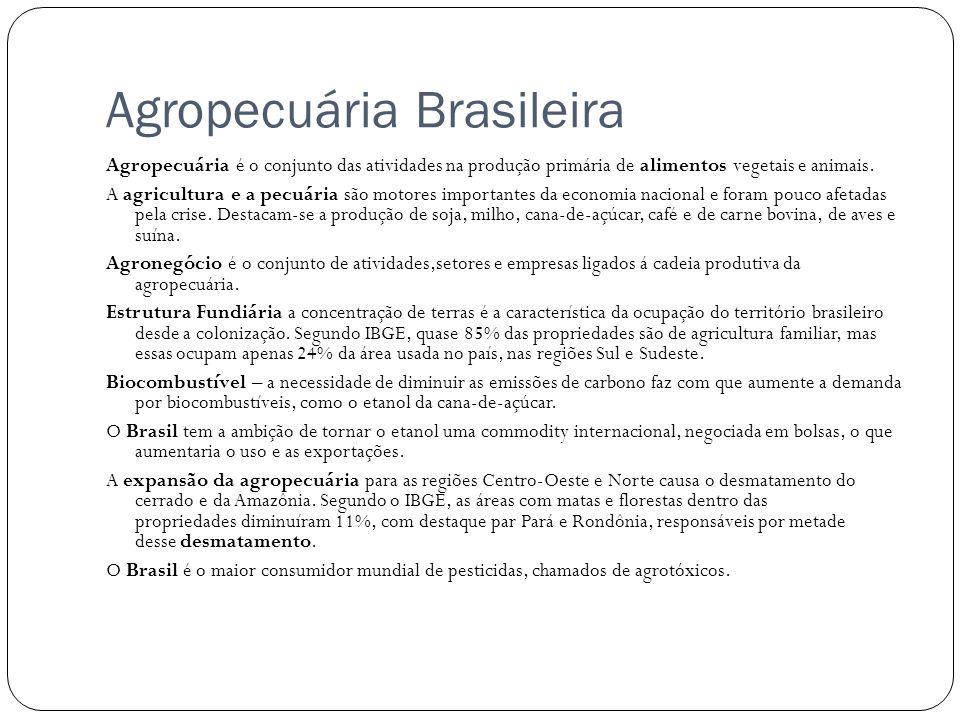 Agropecuária Brasileira Agropecuária é o conjunto das atividades na produção primária de alimentos vegetais e animais. A agricultura e a pecuária são