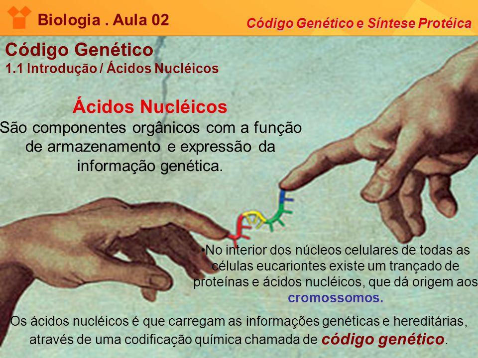 Biologia. Aula 02 Código Genético e Síntese Protéica Código Genético 1.1 Introdução / Ácidos Nucléicos Ácidos Nucléicos Ácidos Nucléicos São component
