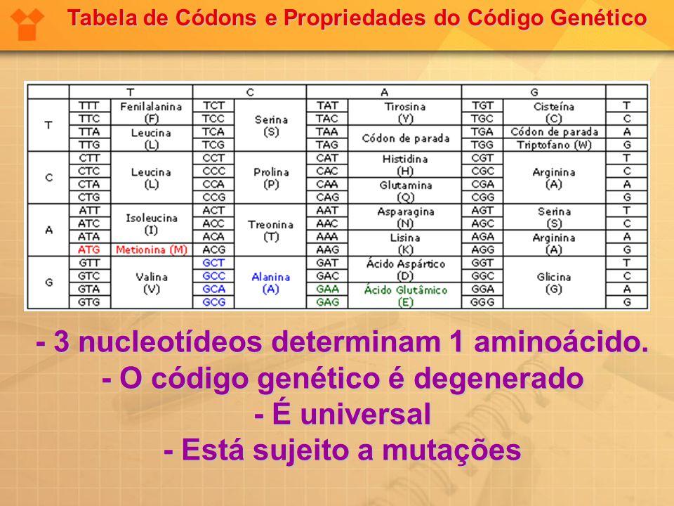 - 3 nucleotídeos determinam 1 aminoácido. - O código genético é degenerado - É universal - Está sujeito a mutações Tabela de Códons e Propriedades do