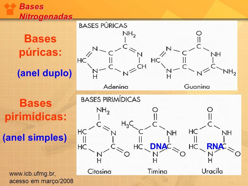 Bases púricas: (anel duplo) Bases pirimídicas: (anel simples) DNARNA Bases Nitrogenadas www.icb.ufmg.br, acesso em março/2008