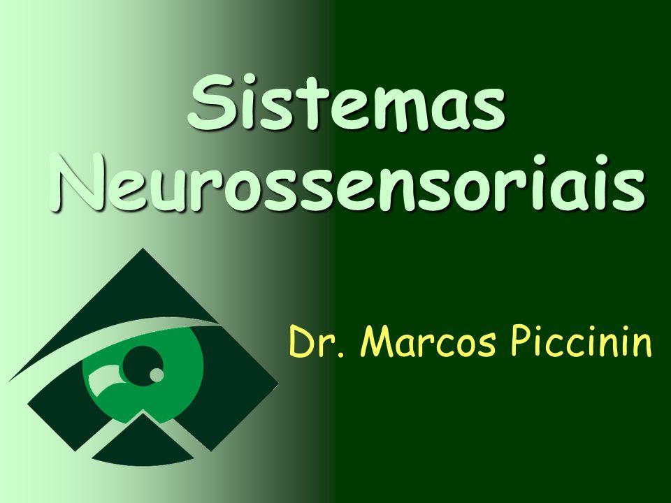 Sistemas Neurossensoriais Dr. Marcos Piccinin