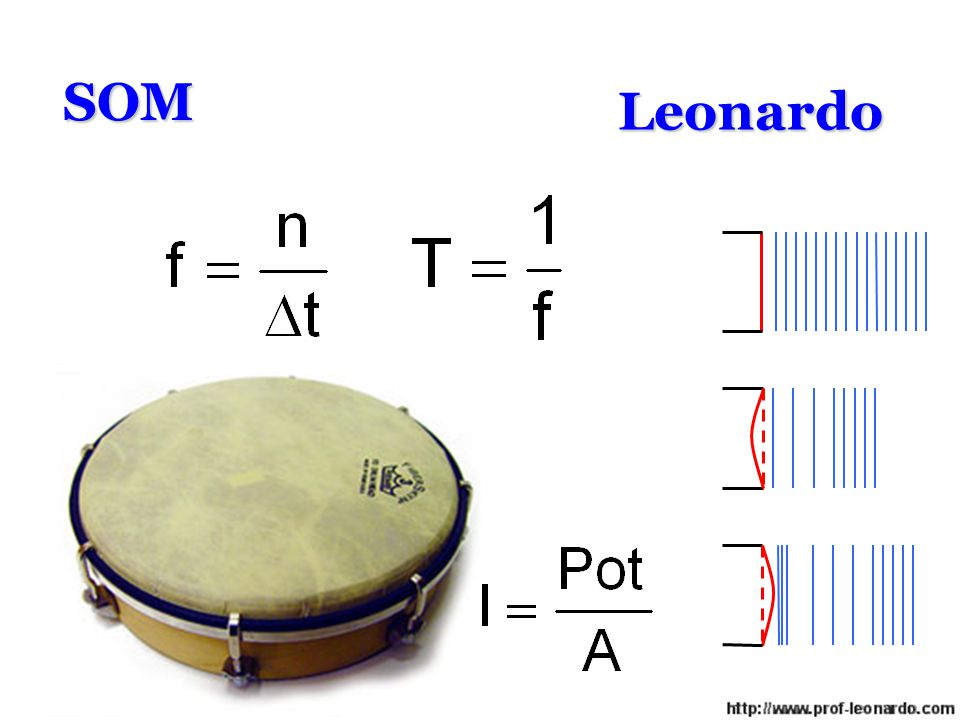 SOM Leonardo Leonardo