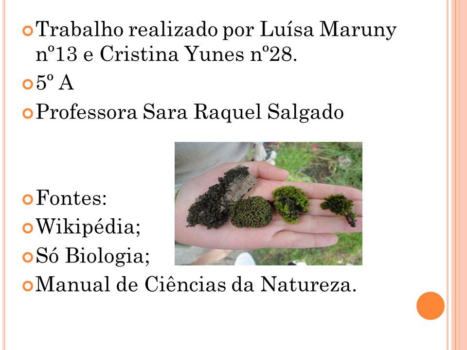 Trabalho realizado por Luísa Maruny nº13 e Cristina Yunes nº28. 5º A Professora Sara Raquel Salgado Fontes: Wikipédia; Só Biologia; Manual de Ciências