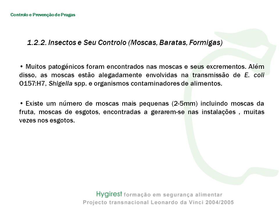 Muitos patogénicos foram encontrados nas moscas e seus excrementos.