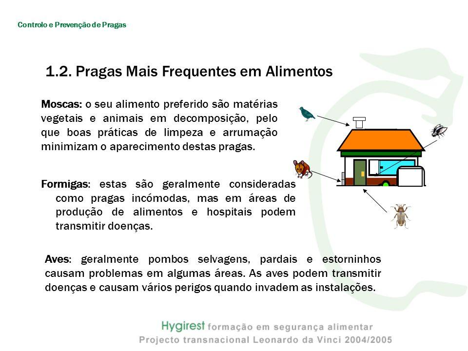 Formigas: estas são geralmente consideradas como pragas incómodas, mas em áreas de produção de alimentos e hospitais podem transmitir doenças. Moscas: