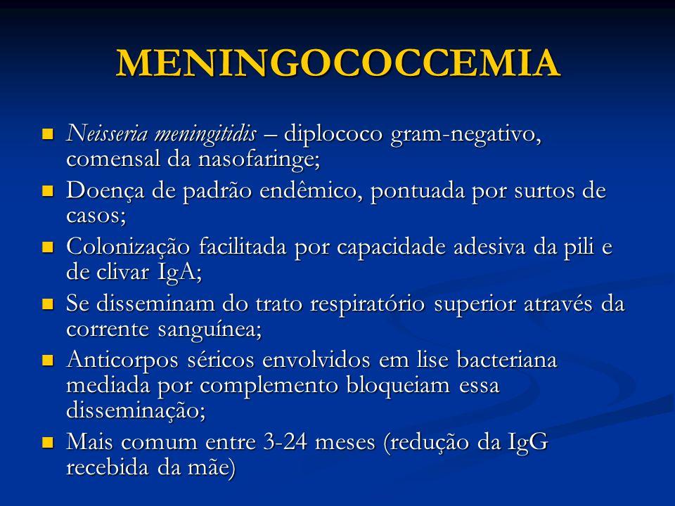 MENINGOCOCCEMIA Neisseria meningitidis – diplococo gram-negativo, comensal da nasofaringe; Neisseria meningitidis – diplococo gram-negativo, comensal da nasofaringe; Doença de padrão endêmico, pontuada por surtos de casos; Doença de padrão endêmico, pontuada por surtos de casos; Colonização facilitada por capacidade adesiva da pili e de clivar IgA; Colonização facilitada por capacidade adesiva da pili e de clivar IgA; Se disseminam do trato respiratório superior através da corrente sanguínea; Se disseminam do trato respiratório superior através da corrente sanguínea; Anticorpos séricos envolvidos em lise bacteriana mediada por complemento bloqueiam essa disseminação; Anticorpos séricos envolvidos em lise bacteriana mediada por complemento bloqueiam essa disseminação; Mais comum entre 3-24 meses (redução da IgG recebida da mãe) Mais comum entre 3-24 meses (redução da IgG recebida da mãe)