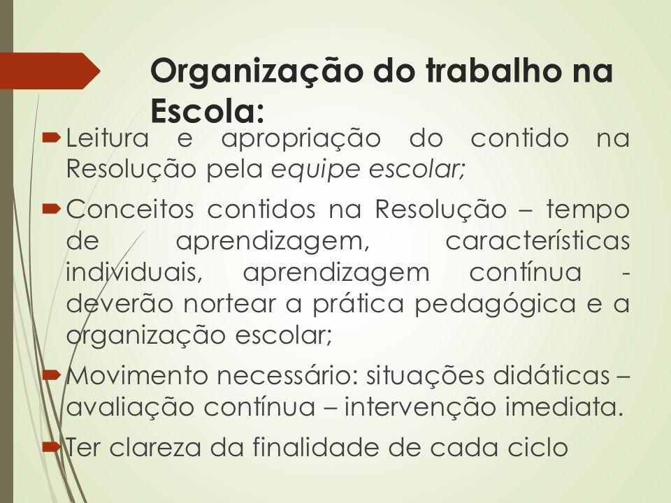 Organização do trabalho na Escola: Leitura e apropriação do contido na Resolução pela equipe escolar; Conceitos contidos na Resolução – tempo de apren