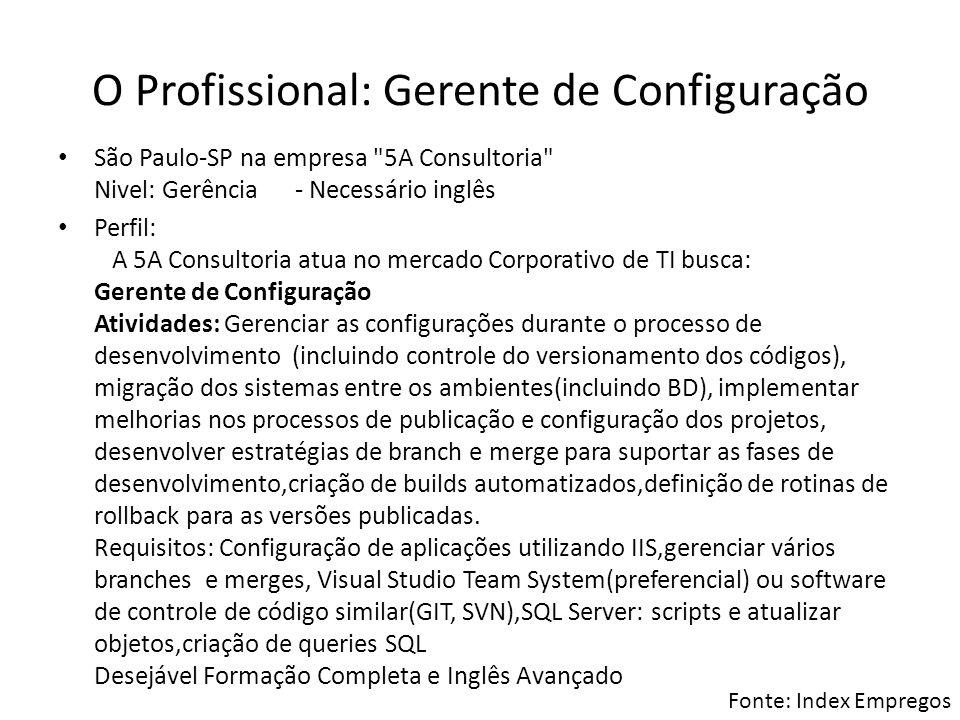 O Profissional: Gerente de Configuração São Paulo-SP na empresa
