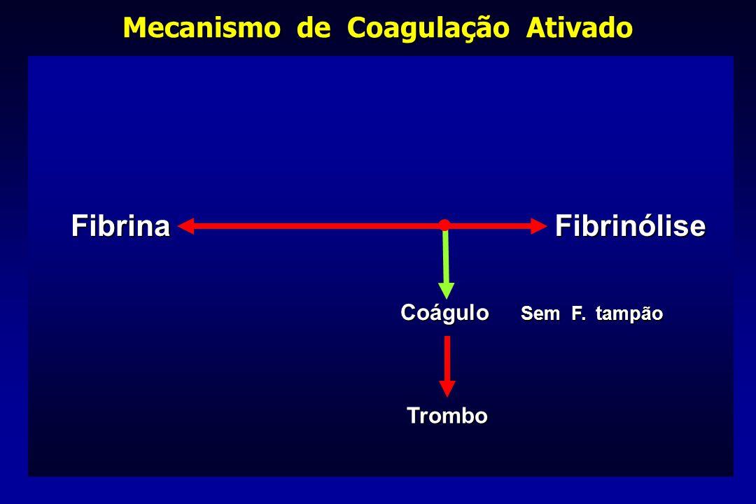FibrinaFibrinólise Coágulo Sem F. tampão Trombo Mecanismo de Coagulação Ativado