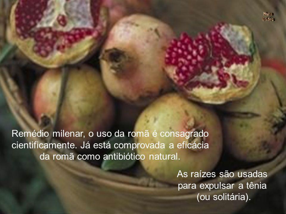 Dinheiro, prosperidade, fartura, estas são algumas das dádivas atribuídas às pequenas sementes da saborosa romã. POMEGRANATES IN PORCELAIN BOWL BY JAN