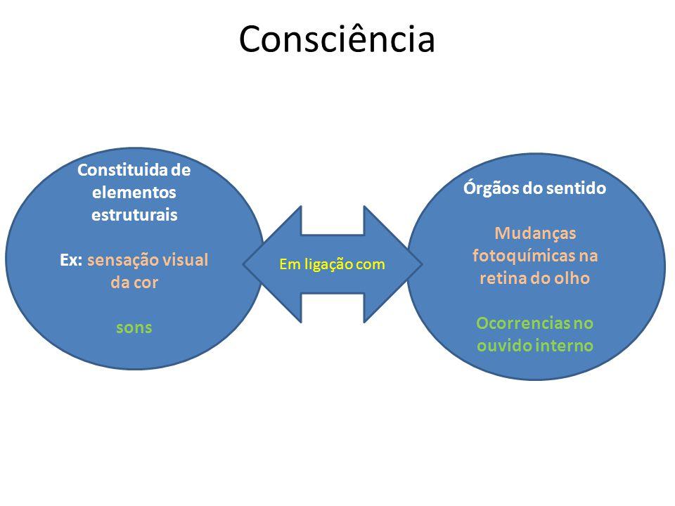 Consciência Constituida de elementos estruturais Ex: sensação visual da cor sons Órgãos do sentido Mudanças fotoquímicas na retina do olho Ocorrencias