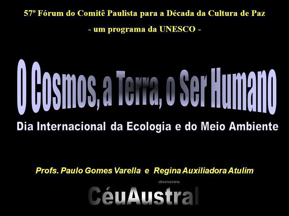 57º Fórum do Comitê Paulista para a Década da Cultura de Paz - um programa da UNESCO - Profs. Paulo Gomes Varella e Regina Auxiliadora Atulim observat