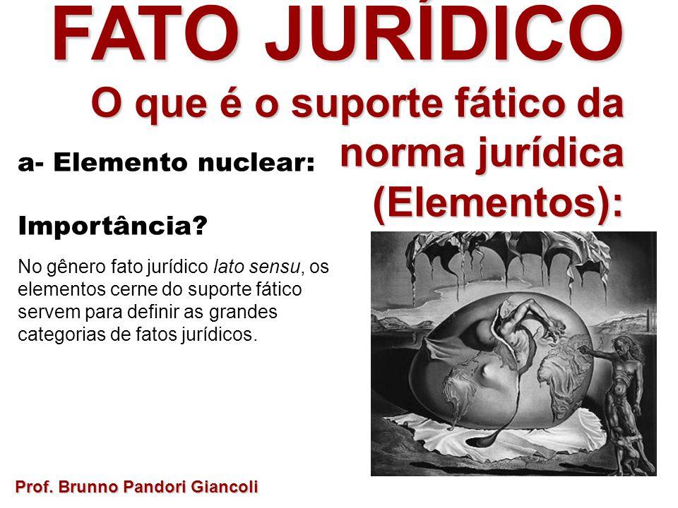 FATO JURÍDICO O que é o suporte fático da norma jurídica O que é o suporte fático da norma jurídica(Elementos): a- Elemento nuclear: Importância? No g