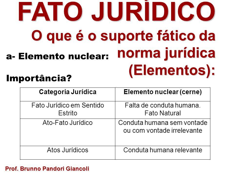 FATO JURÍDICO O que é o suporte fático da norma jurídica O que é o suporte fático da norma jurídica(Elementos): a- Elemento nuclear: Importância? Prof