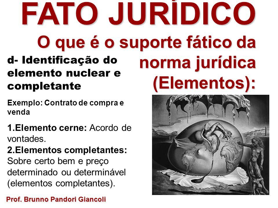 FATO JURÍDICO O que é o suporte fático da norma jurídica O que é o suporte fático da norma jurídica(Elementos): d- Identificação do elemento nuclear e