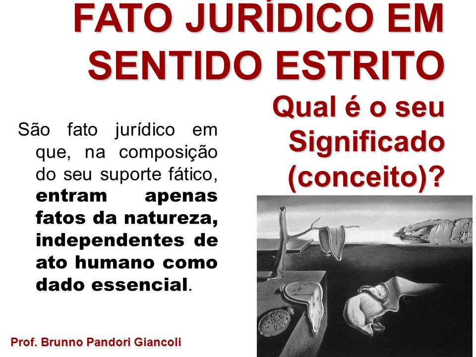 FATO JURÍDICO EM SENTIDO ESTRITO Qual é o seu Qual é o seuSignificado(conceito)? Prof. Brunno Pandori Giancoli São fato jurídico em que, na composição