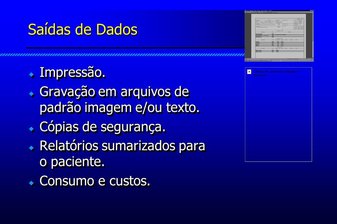 Saídas de Dados Impressão. Impressão. Gravação em arquivos de padrão imagem e/ou texto.
