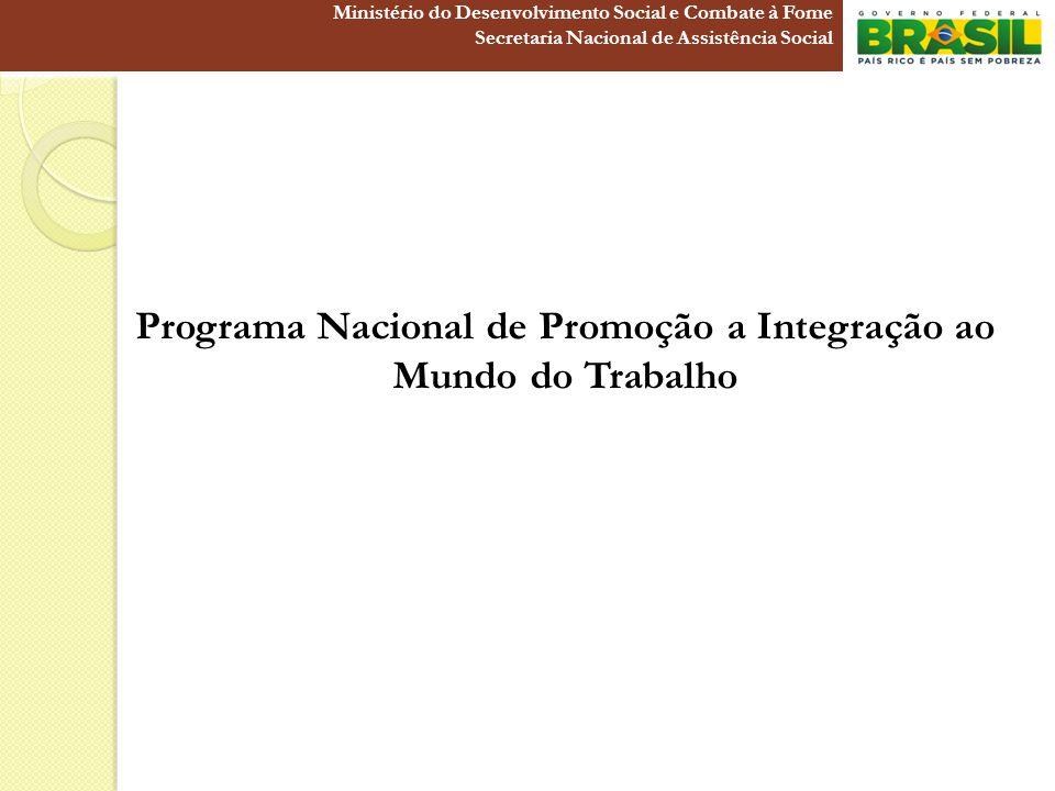 Programa Nacional de Promoção a Integração ao Mundo do Trabalho Ministério do Desenvolvimento Social e Combate à Fome Secretaria Nacional de Assistênc