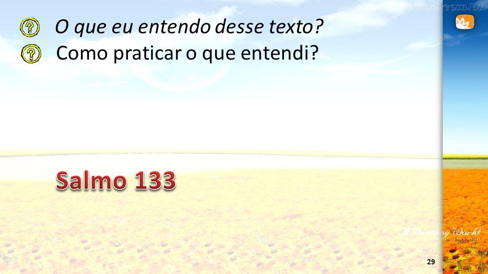 29 O que eu entendo desse texto? Como praticar o que entendi?