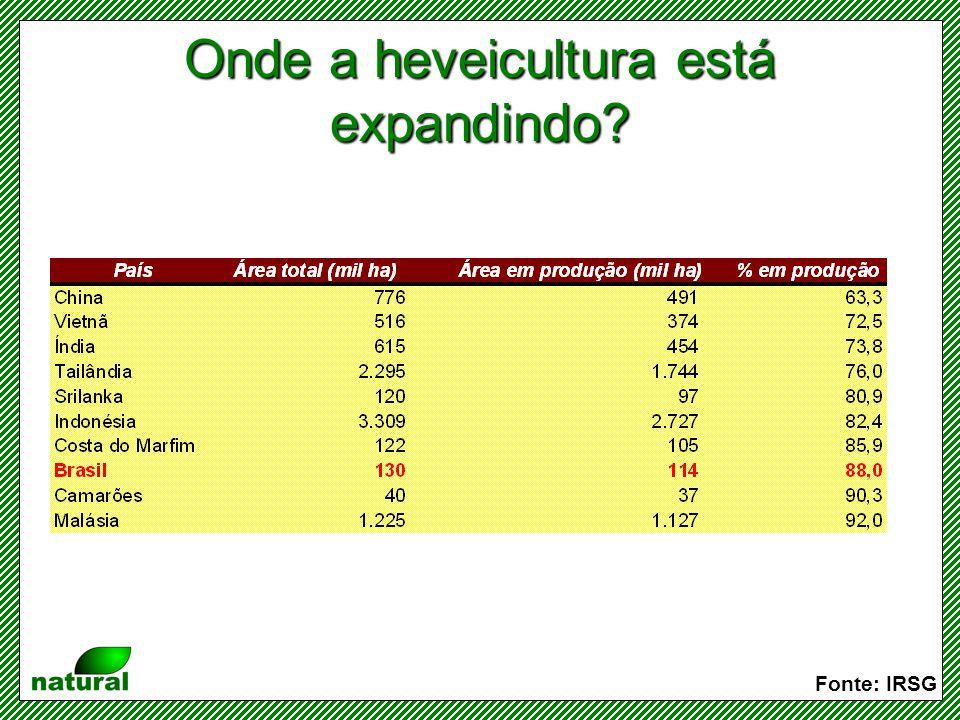 Produtividade média dos principais produtores Fonte: IRSG