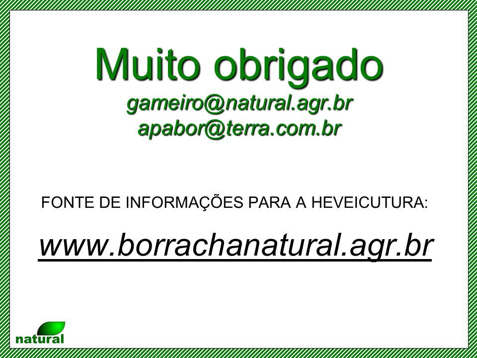 Muito obrigado gameiro@natural.agr.br apabor@terra.com.br FONTE DE INFORMAÇÕES PARA A HEVEICUTURA: www.borrachanatural.agr.br