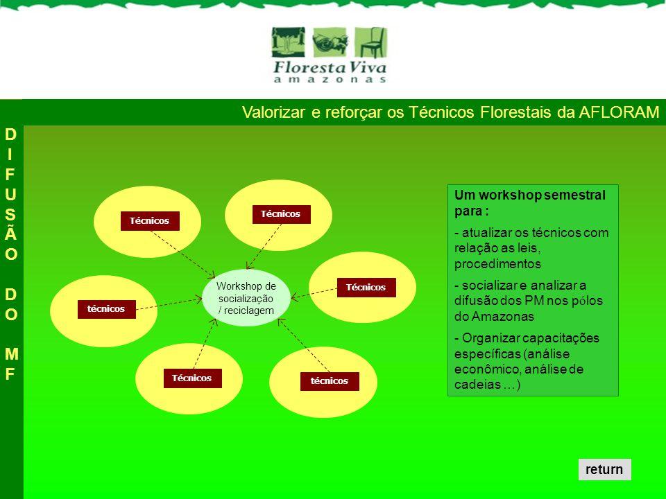 Valorizar e reforçar os Técnicos Florestais da AFLORAM Técnicos técnicos Técnicos técnicos Workshop de socialização / reciclagem DIFUSÃO DO MFDIFUSÃO