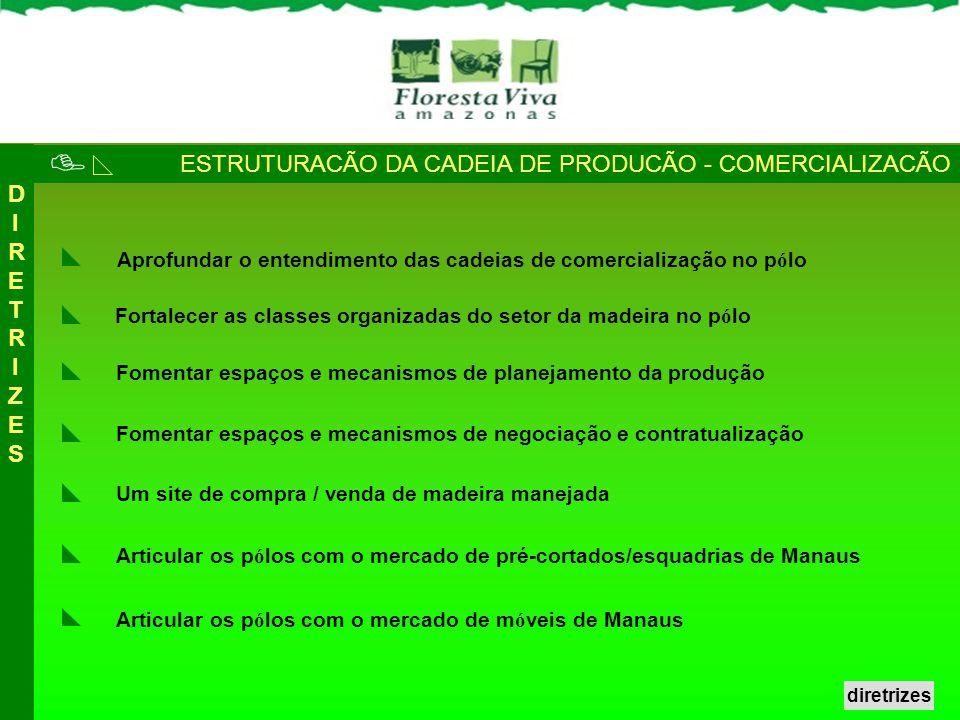 ESTRUTURACÃO DA CADEIA DE PRODUCÃO - COMERCIALIZACÃO Fortalecer as classes organizadas do setor da madeira no p ó lo Aprofundar o entendimento das cad