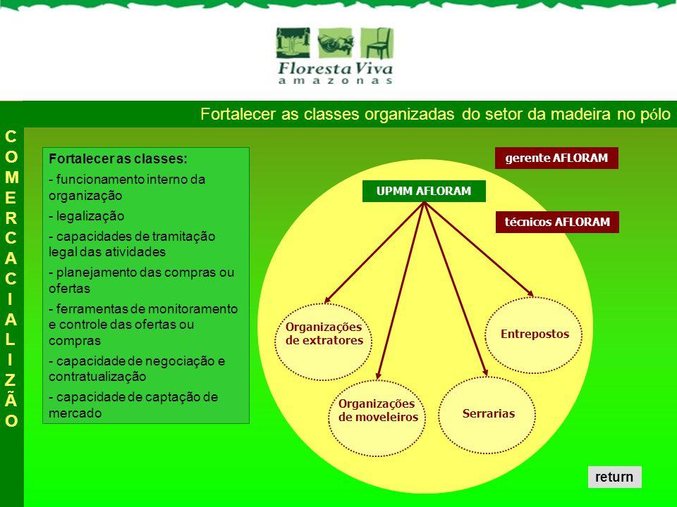 Fortalecer as classes organizadas do setor da madeira no p ó lo Fortalecer as classes: - funcionamento interno da organização - legalização - capacida