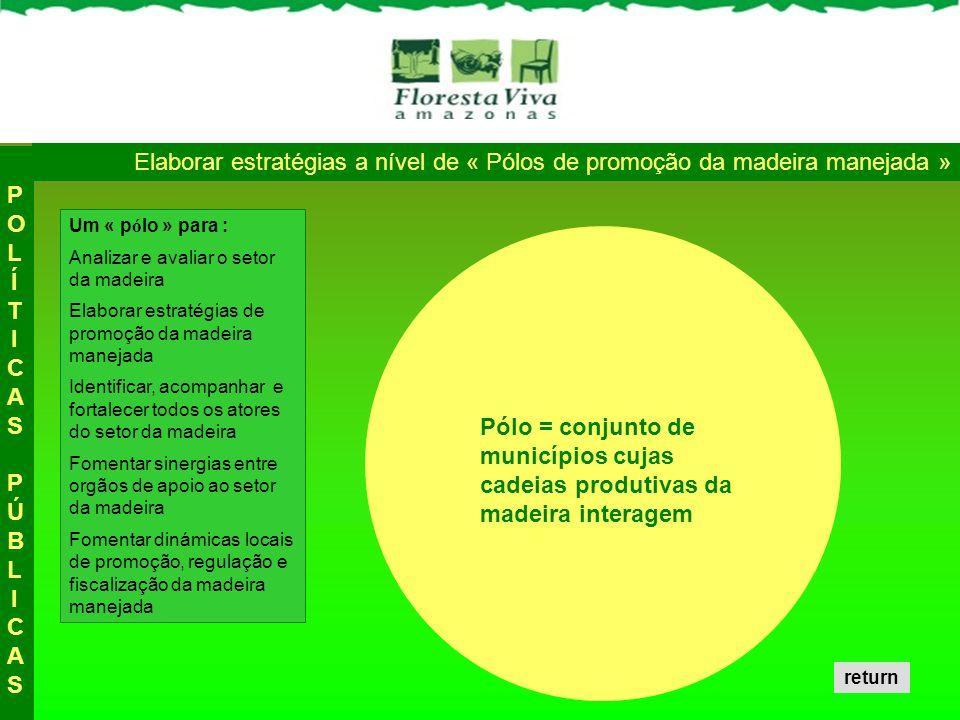 Um « p ó lo » para : Analizar e avaliar o setor da madeira Elaborar estratégias de promoção da madeira manejada Identificar, acompanhar e fortalecer t