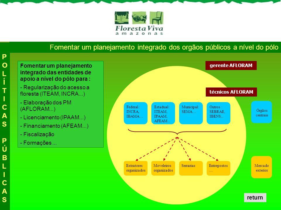 ExtratoresMoveleiros Uma UPMM para : - Promover o manejo florestal no pólo - Envolver todos atores da cadeia - Fortalecer os atores da cadeia, e as relações entre os atores da cadeia - Facilitar a relação « atores / órgãos públicos » - Facilitar a relação «atores / mercado » - Criar as condições para a criação de um Comité de Promoção da Madeira Manejada (CPMM) Órgãos centrais Mercado exterior UPMM AFLORAM Reforçar a capacidade de atuação da AFLORAM nos pólos : a UPMM técnicos AFLORAM gerente AFLORAM Federal : INCRA, IBAMA… Estadual : ITEAM, IPAAM, AFEAM...